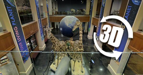 3D Virtual Tour: Monte L Bean Life Science Museum